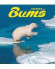 Isbjörn hoppar mellan isflak.