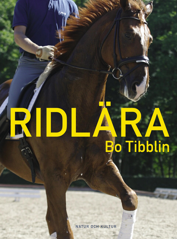 Ryttare på sin häst.