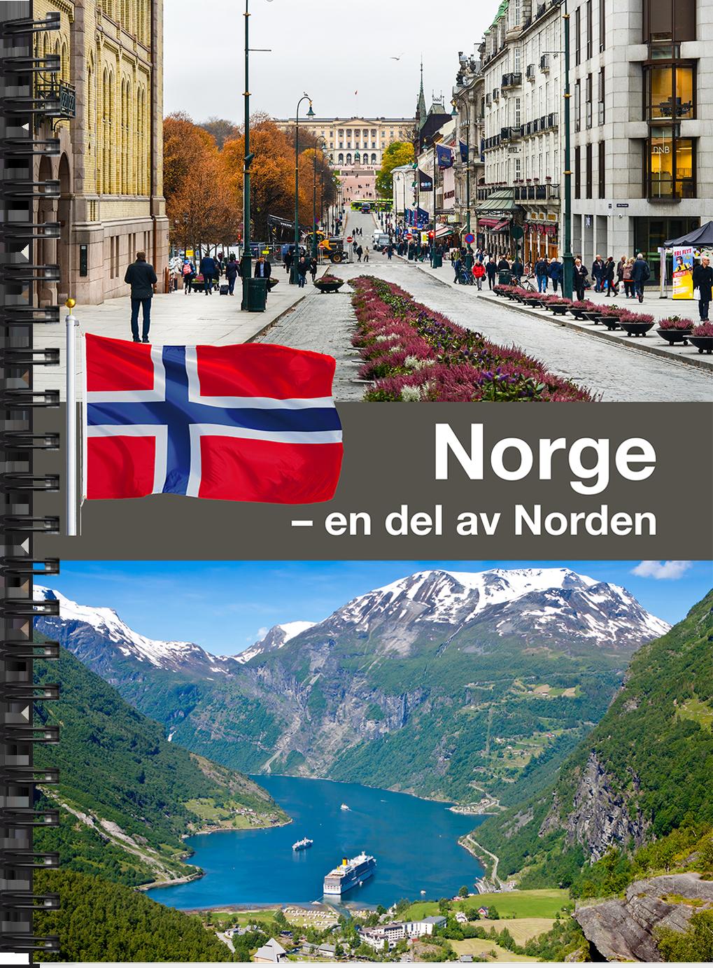 En gågata i Norge.