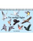 Diverse fåglar mot en ljusblå bakgrund.