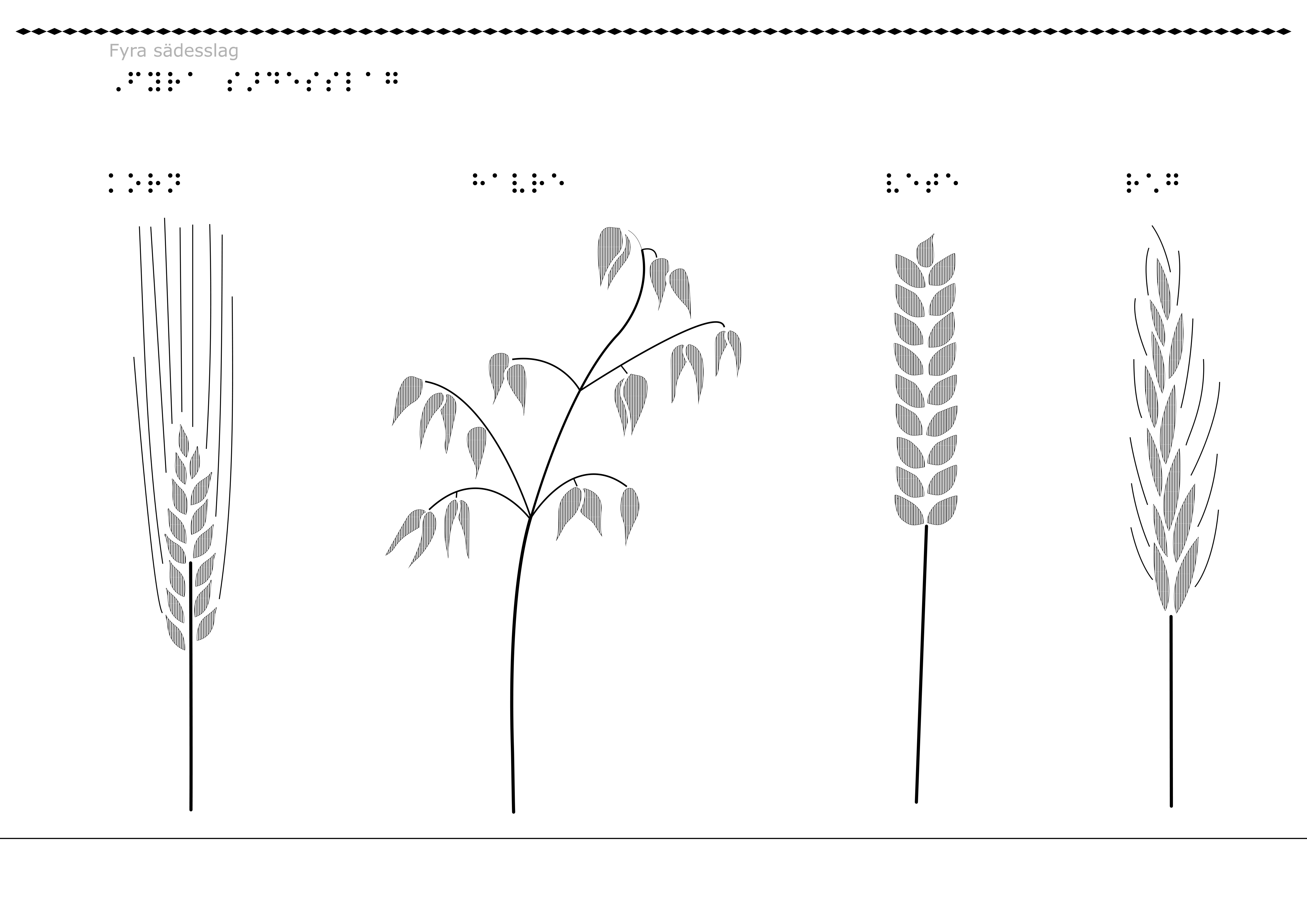 de fyra sädesslagen bild