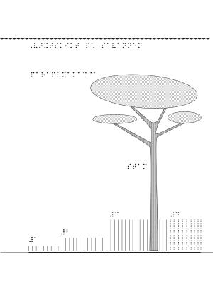 Ett träd hemmahörande på savannen samt text på punktskrift.