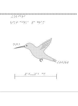 Taktil bild på en kolibri.
