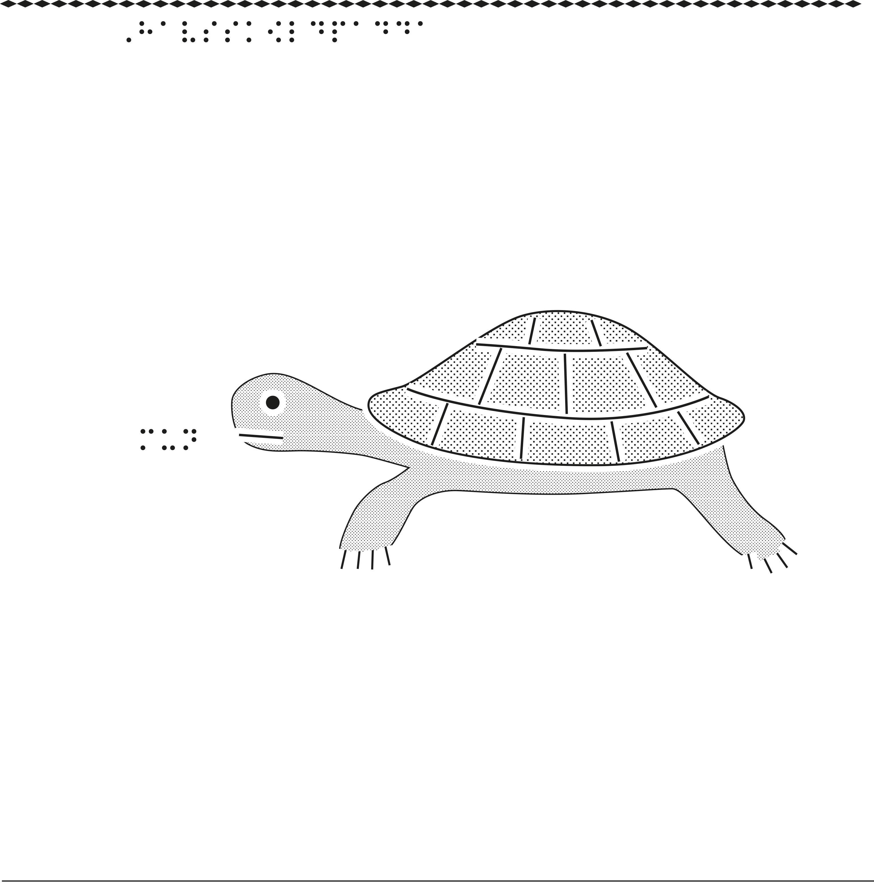 Taktil bild på en havssköldpadda.
