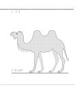 Kamel i relief.