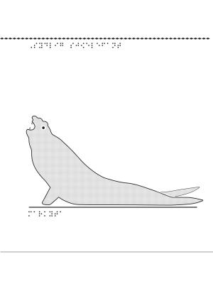 Sydlig sjöelefant i relief.