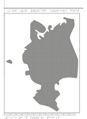Karta över västra Ryssland i relief med tillhörande punktskrift.