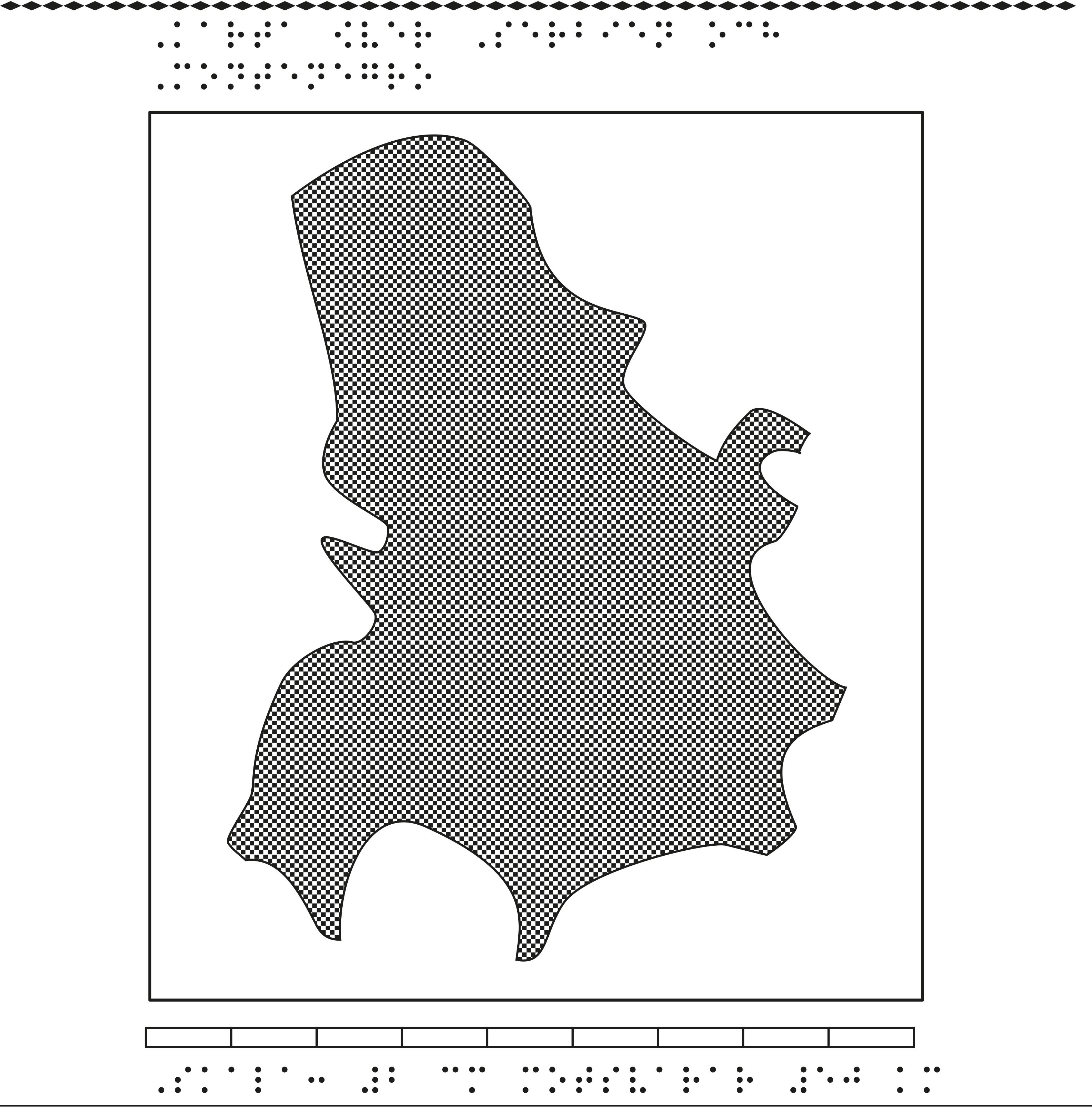 Karta över Serbien och Montenegro i relief med tillhörande punktskrift.