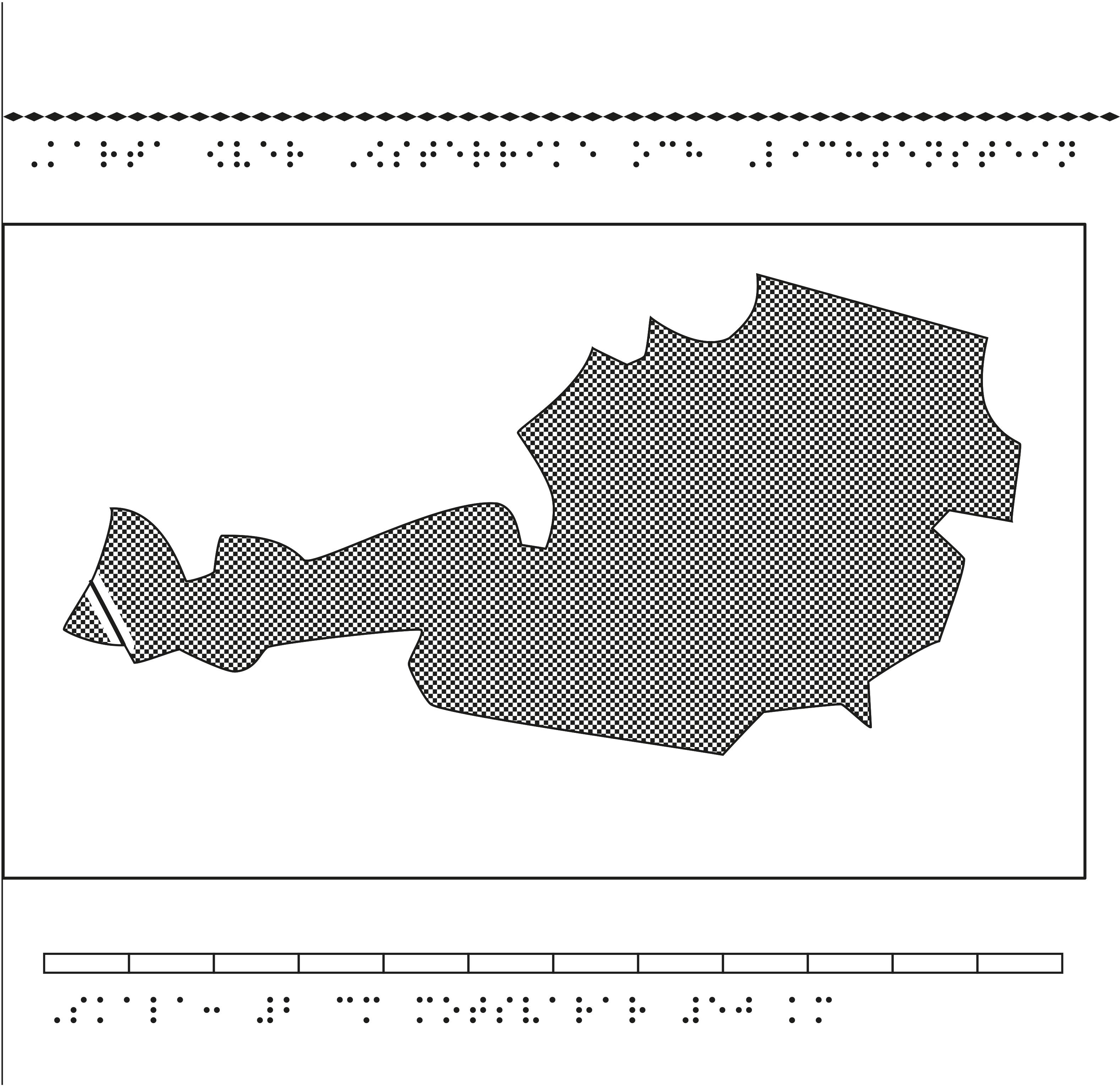 Karta av Österrike och Lichtenstein i relief med tillhörande punktskrift.