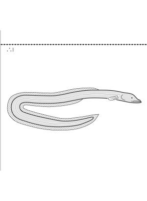 En bild på en ål.