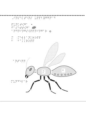 En bild om insekternas uppbyggnad.