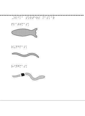 En bild på olika sorters maskar.