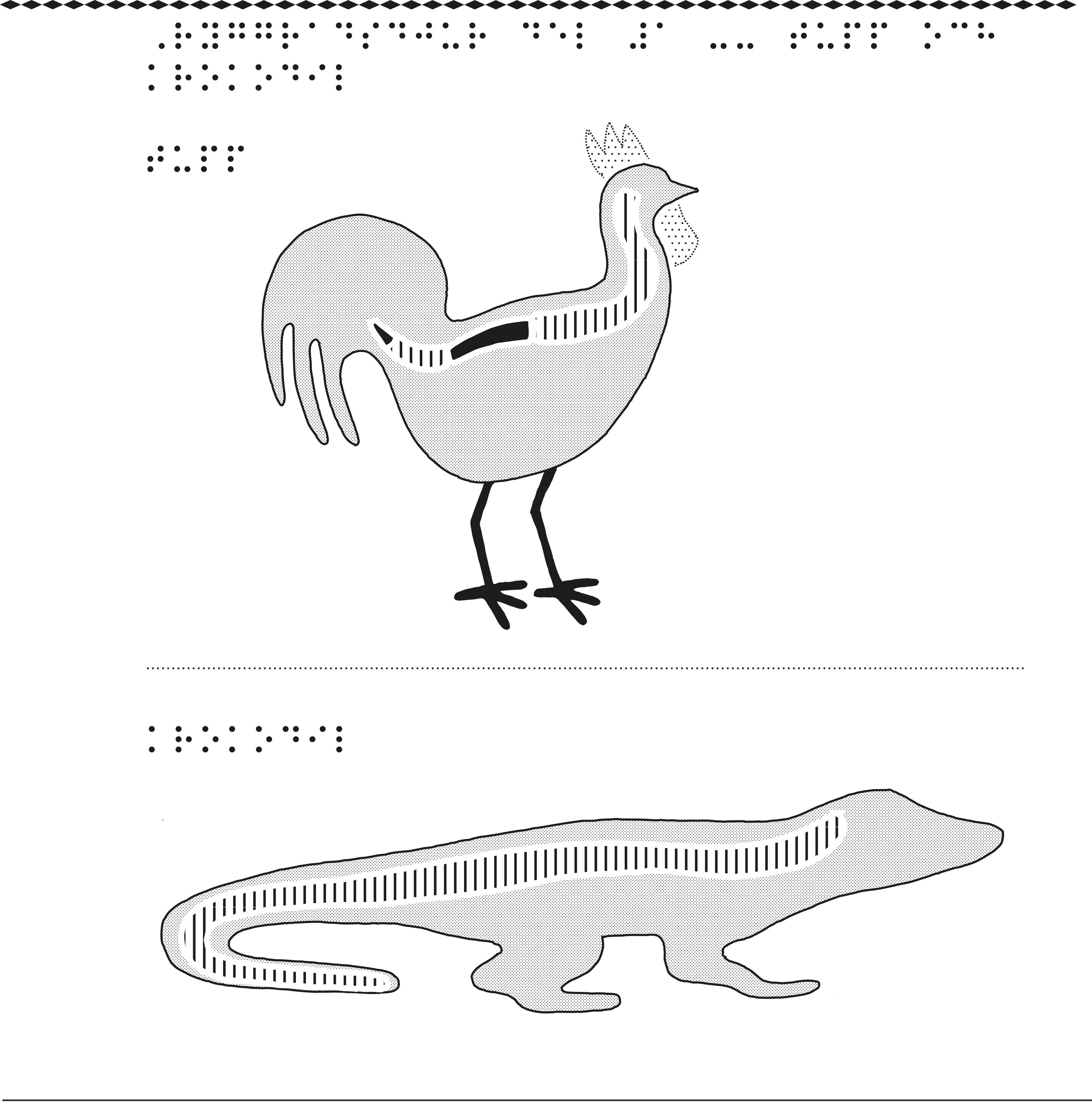 En taktil bild på ryggradsdjurens uppdelning.