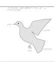 Fågelns uppbyggn. del 1–3: fågelkropp, inälvor, andnings- och luftsystem.