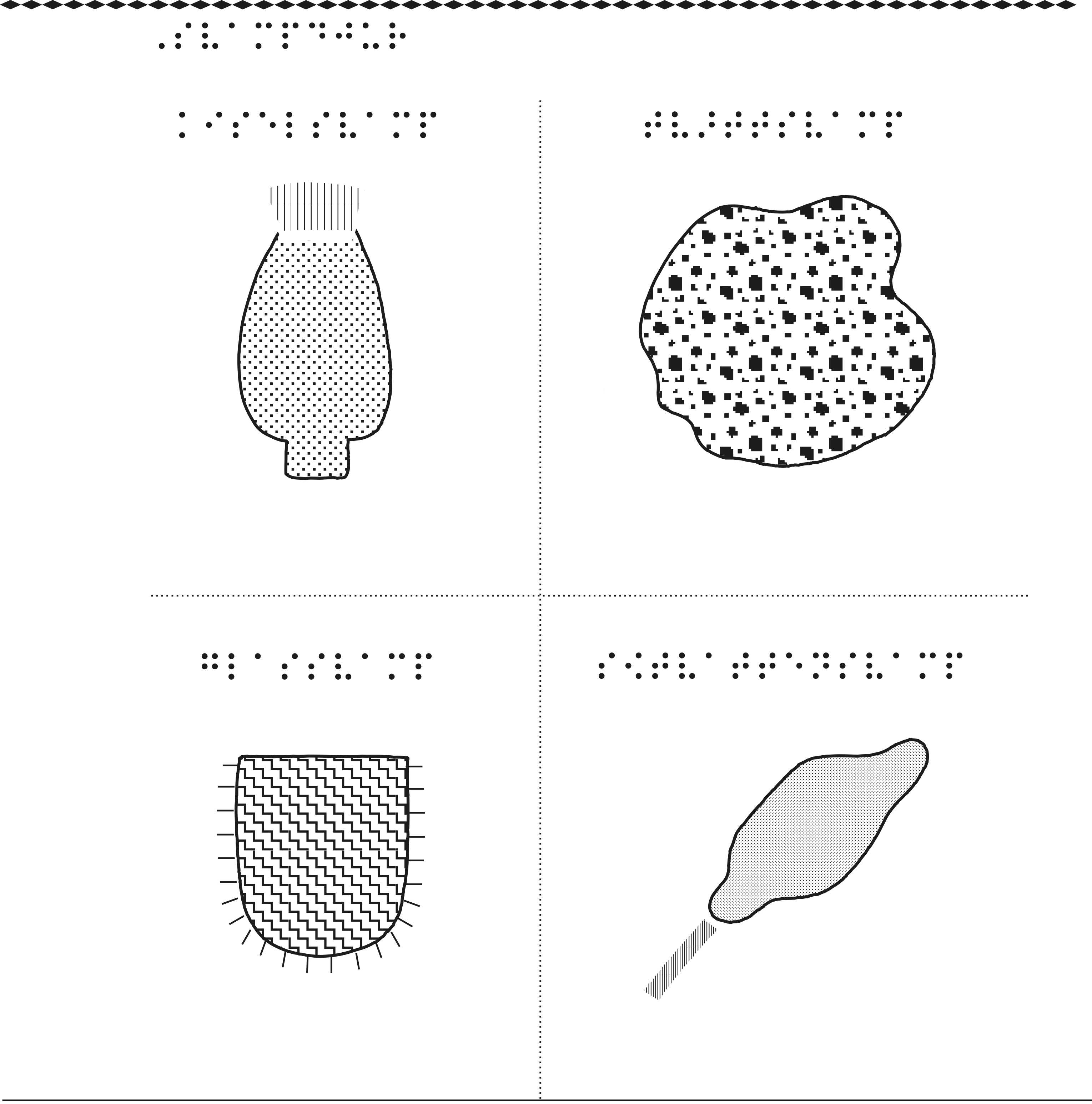 Svampdjur – kiselsvamp, tvättsvamp, glassvamp, sötvattensvamp.