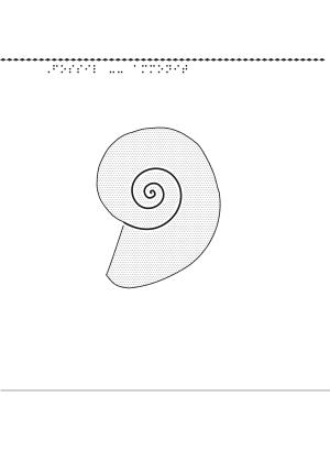 Fossil, ammonit.