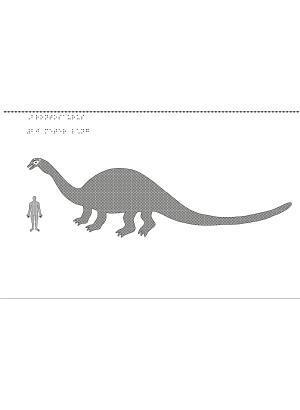 Brontosaurus.