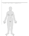 Kvinna framifrån – kroppsdelar, i relief.