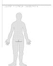 Kvinna bakifrån – kroppsdelar, i relief.