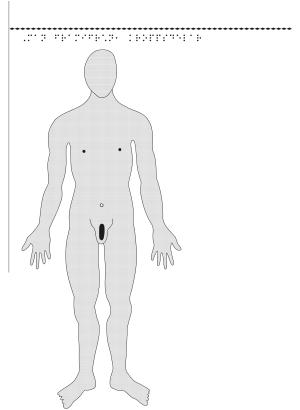 Man framifrån – kroppsdelar, i relief.