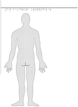 Man bakifrån – kroppsdelar, i relief.