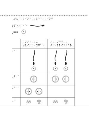Tabell i punktskrift som visar tvillingars utveckling.
