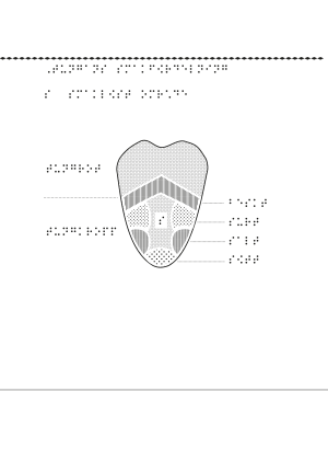 Tunga med smakfördelning markerad.