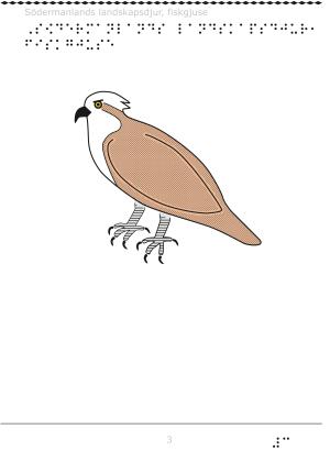 Södermanlands landskapsdjur
